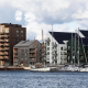 Hopes for structural timber boosted by Construction Industry Council